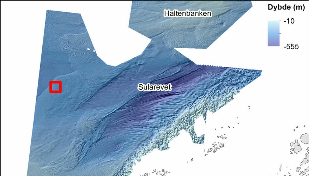 Detaljert terrengkart over bankene på Trøndelagskysten. Den røde firkanten viser kartutsnittet i figur 2. Dybdedata fra Kartverket/Mareano.
