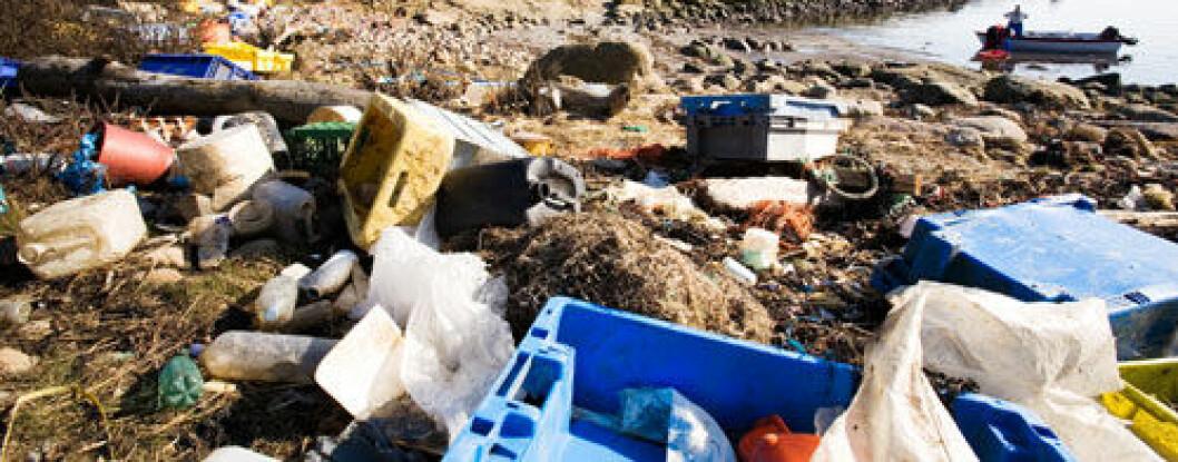 28 milloner tonn plast ender i havet. Nå vil forskere finne ut hvordan plastpartiklene påvirker livet i havet og hvilke konsekvenser det har for marine organismer og det marine økosystemet langs norskekysten. (Foto: Shutterstock)