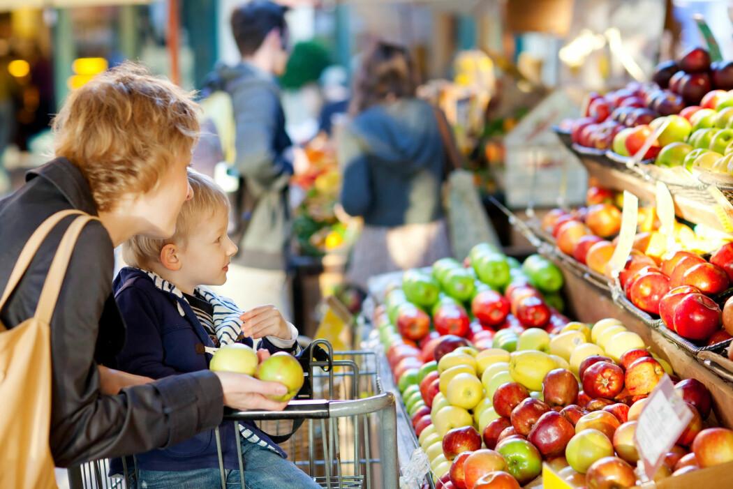 I løpet av de siste tre årene er flere blitt mer positive til salg av genmodifiserte produkter i norske dagligvarebutikker. I 2017 var kun 15 prosent positive. I år svarer nær en av fire at de er positive til dette i butikken.