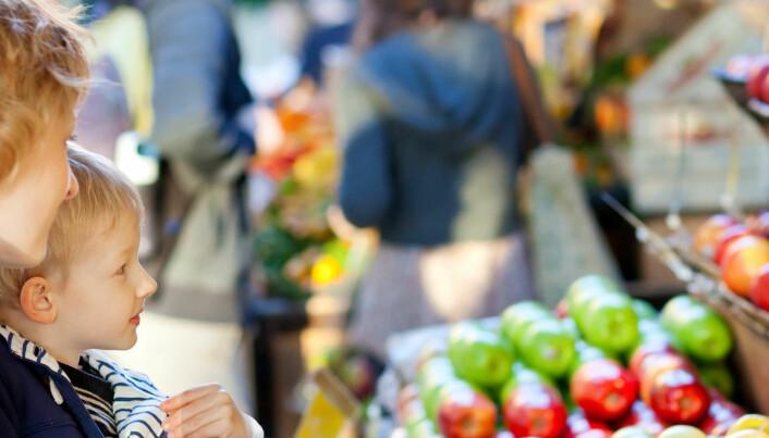 Flere nordmenn har blitt positive til genmodifiserte dagligvarer
