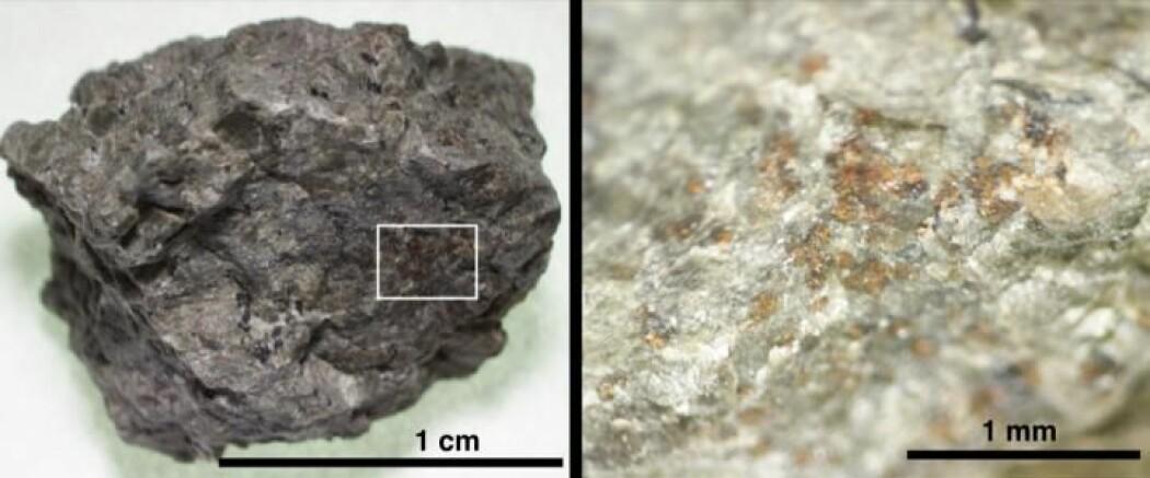Den berømte Mars-meteoritten ALH 84001 inneholder oransje korn av organiske stoffer
