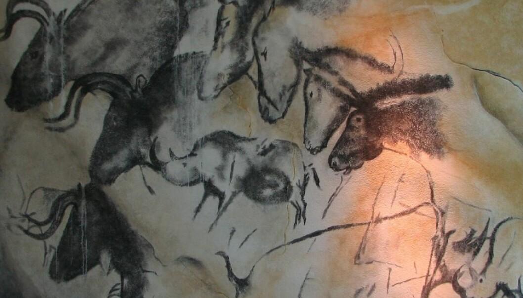 En masse forskjellige dyr, eller noen få dyr i bevegelse bortover veggen? Arkeologen Marc Azéma argumenterer for det siste i en ny animasjonsvideo. HTO/Wikimedia Creative Commons