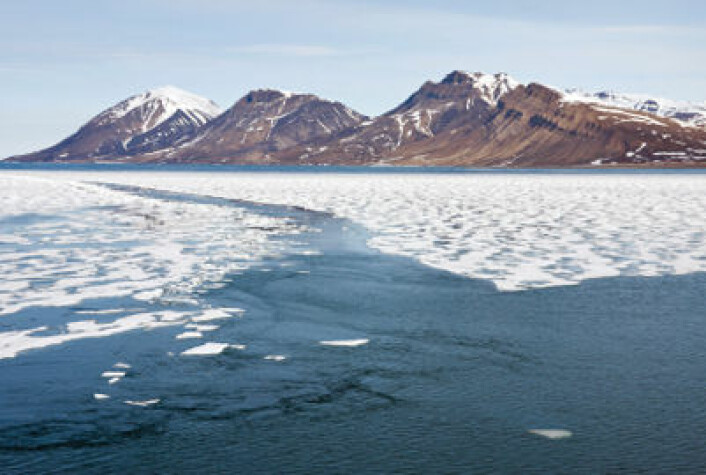 Sjøisen i Arktis har ifølge nye målinger nådd et rekordlavt nivå i år. (Foto: iStockphoto)