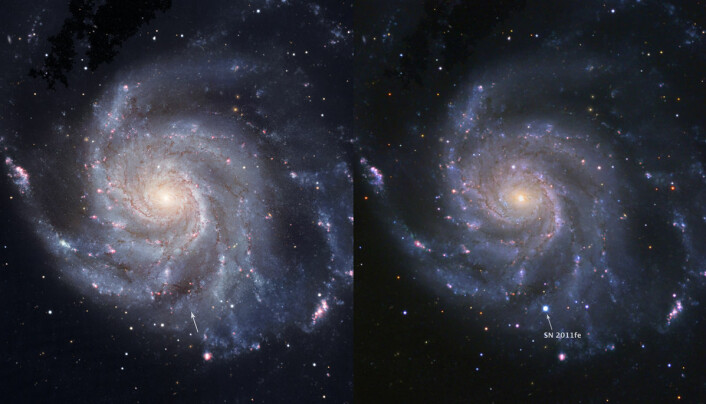 Til venstre: Bilde av galaksen Messier 101 før supernovaen, tatt av Hubble Space Telescope. Til høyre: SN2011fe på maks styrke. (Foto: BJ Fulton (LCOGT), PTF & the Space Telescope Science Institute)