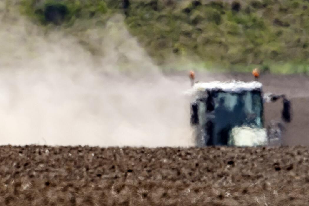 En bonde i Bad Lauchstaedt i Tyskland pløyer åkeren sin i hetedisen. En studie fra nederlandske forskere spår at en tredel av verdens befolkning kan lide under ekstrem hete om 50 år.