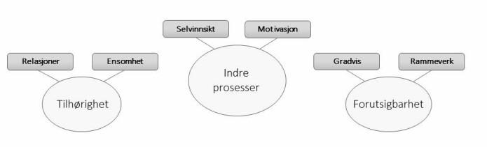 Figur 1: Funn fra fokusgruppestudien