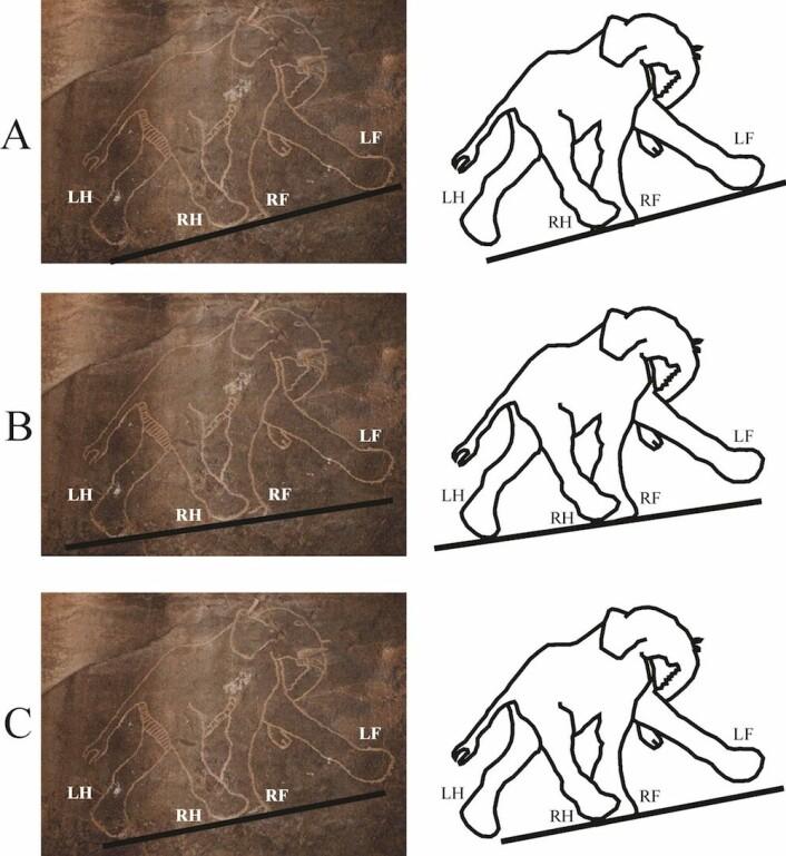 I denne tegningen fra Libya er det tre ulike muligheter for hvor jorden skal befinne seg under elefanten. Uansett er beina plassert feil. (Foto: Gabor Horvarth)