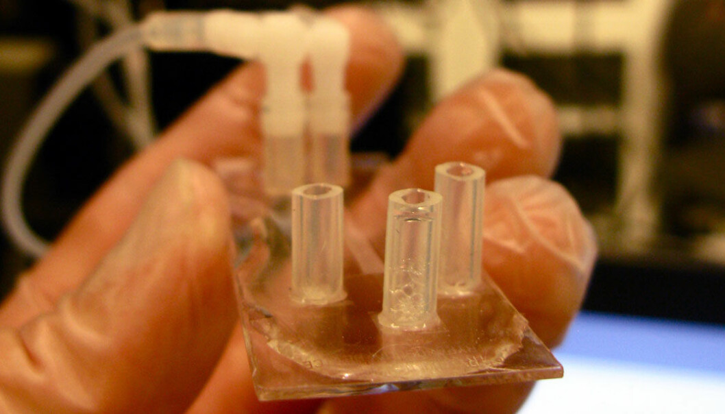 Dette er en prototype av diagnostiserings-chipen. Den er av plast og på størrelse med et kredittkort. Jason Beech
