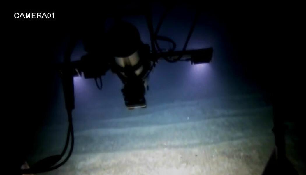 Sand- og grusbølger sett fra pilotkameraet på videoriggen.<br>Foto: Mareano / Havforskningsinstituttet