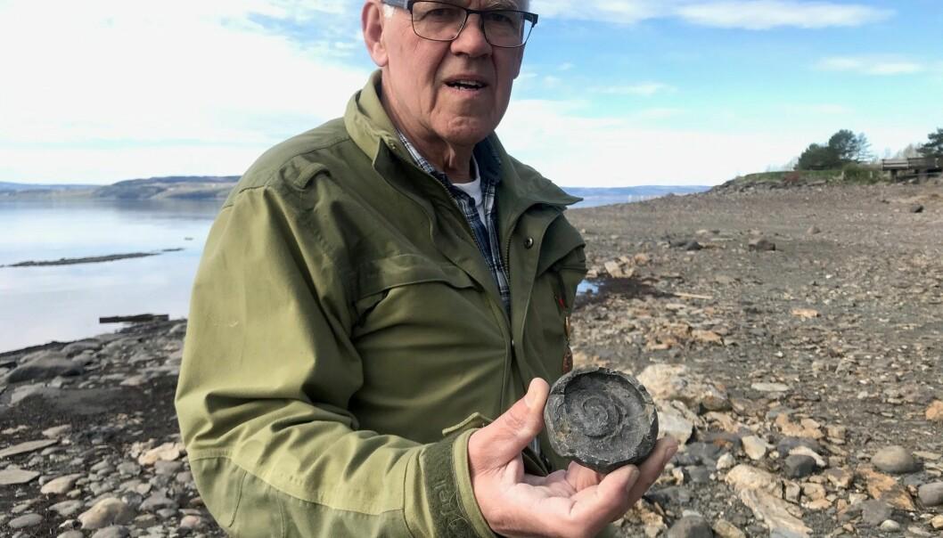 Ole Nashoug viser fram et Discoceras-fossil.