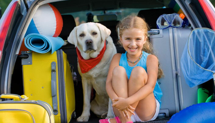 Though normally a fan of sustainable options, Gössling recommends travelling by car this summer.