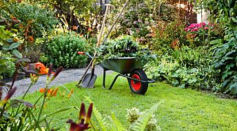 Vil du ha hage som er bra for klimaet og naturen?