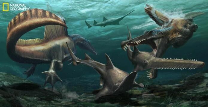 Slik kan Spinosaurus ha levd. (Utgravingen av halen var støttet med penger av National Geographic Society.)