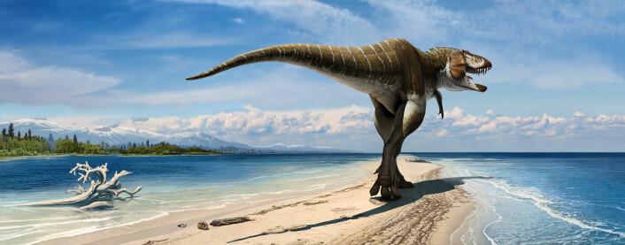 Lythronaxen var den største kjøtteteren i sitt økosystem. (illustrasjonsfoto: Andrey Atuchin)