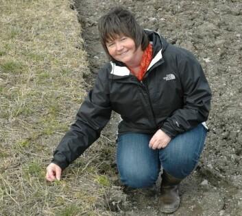 Forsker Kirsten Semb Tørresen ved Bioforsk Plantehelse. (Foto: Jon Schärer)