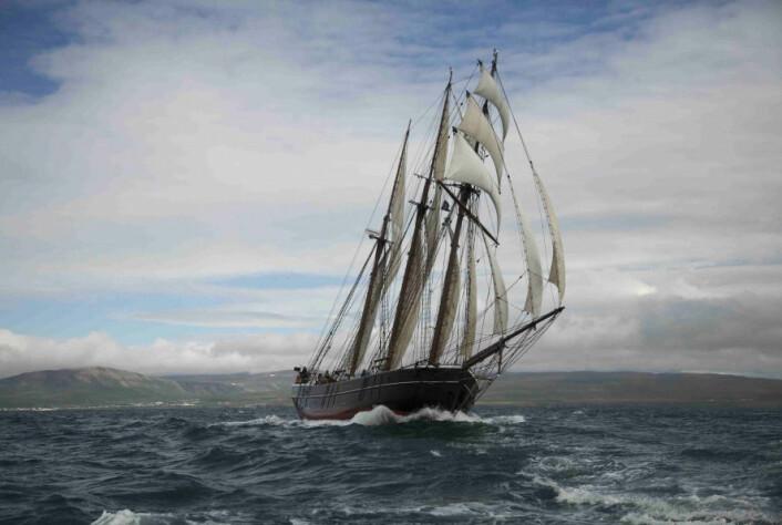Ishavsskipet Activ er deltakernes hjem på ekspedisjonen. (Foto: Hans Jensen)