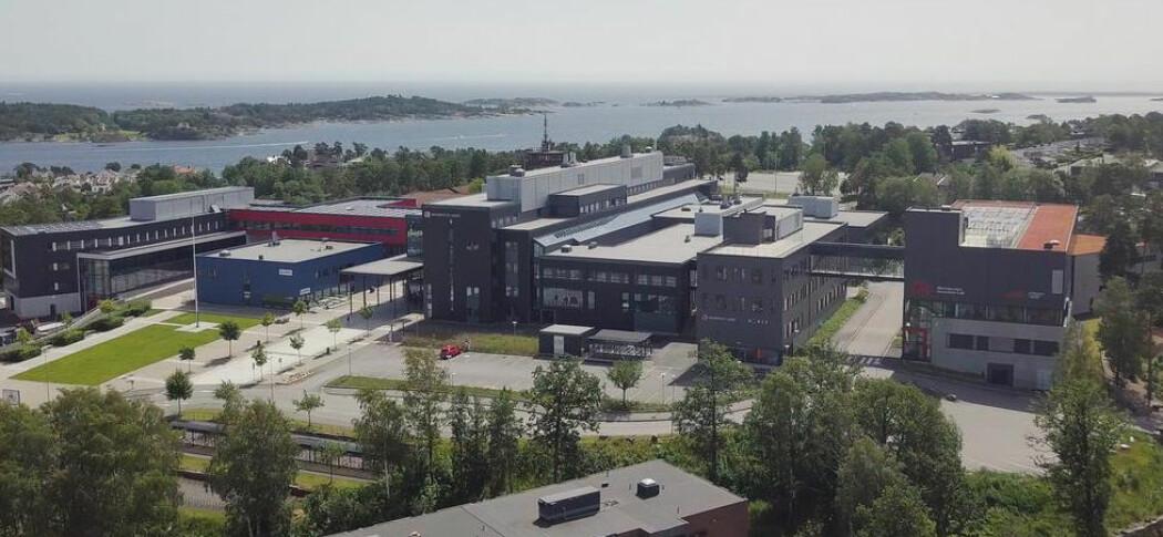 Forskarar frå campus Grimstad går saman med indiske universitet for å etablere eit nettverk for tverrfagleg forsking i mekatronikk og IKT.