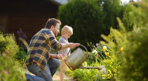De som brukte hagen, rapporterte om bedre helse