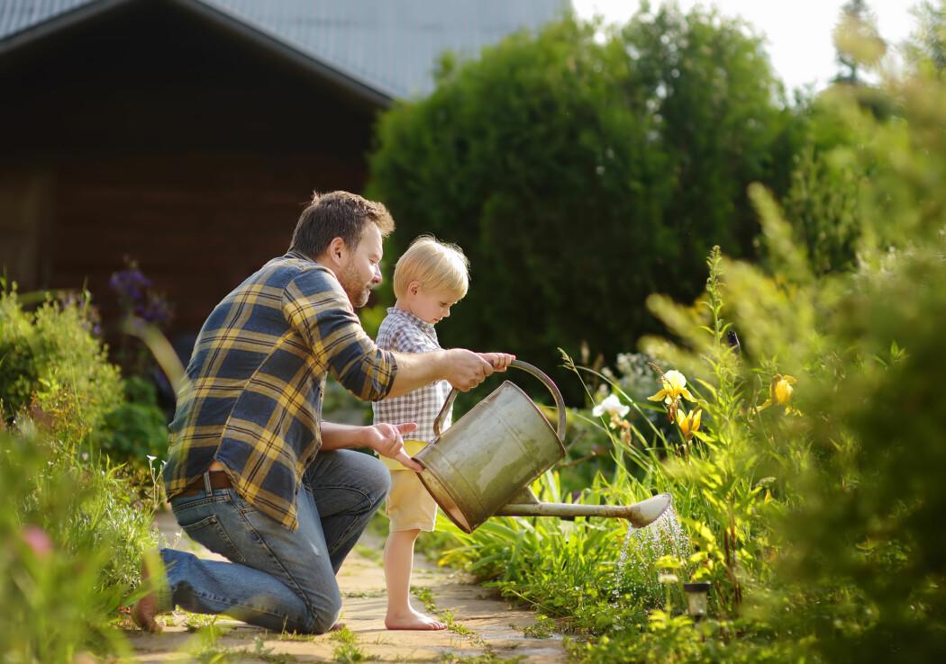 Tilgang på hage henger sammen med mer velvære og bedre helse, viser en ny, stor studie.