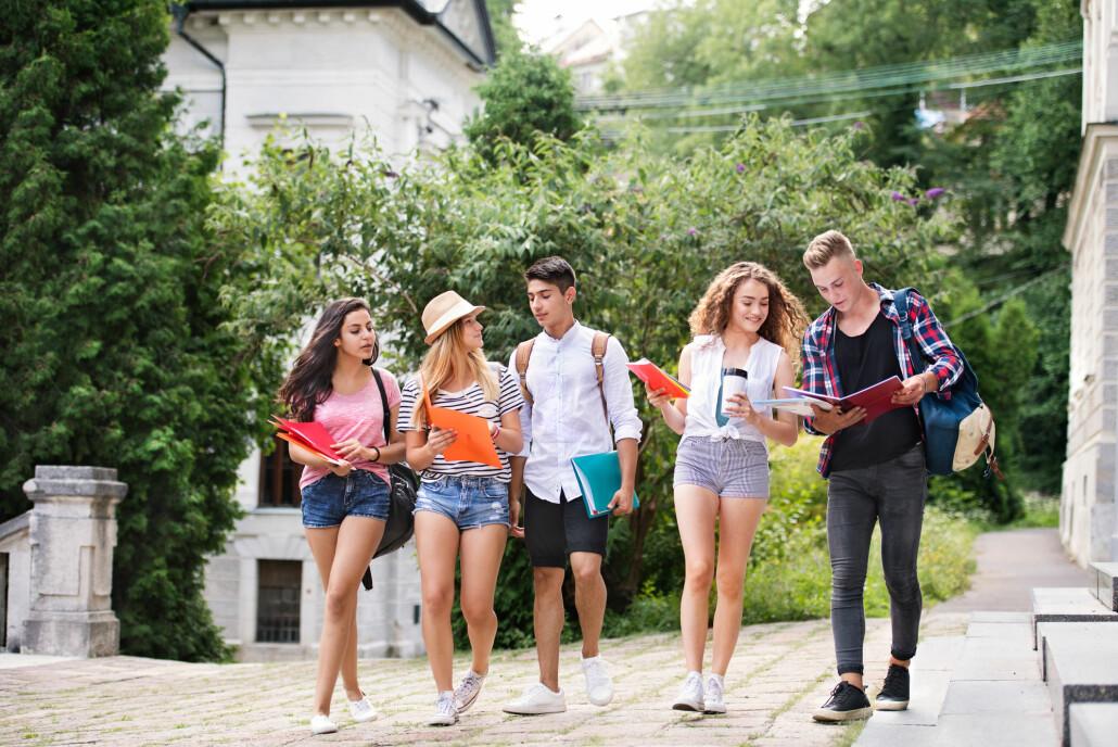 Fritidsklubber gir grobunn for gode vennerelasjoner. Ifølge forsker Idunn Seland bruker overraskende mange ressurssterke unge disse tilbudene.