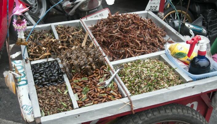 Fra marked i Bangkok. Forskere jobber med finne måter insekter kan bli en del av kosten også her i Norden.
