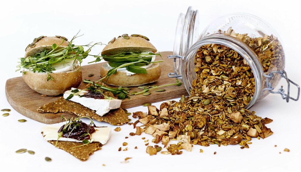 Bilde av granola med melorm, hentet fra forskernes brosjyre Insekter som kulinarisk delikatesse.