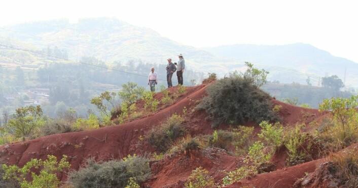 Området i Lufeng i Kina der fossilene er funnet kalles Dark Red Beds, eller Mørkerøde bed, etter fargen på jorda. Det ligger midt i et jordbruksområde, og er omringet av tobakksåker på alle kanter, forteller Jørn Hurum. (Foto: R. Reisz)