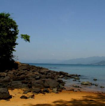 """""""Tropiske innsjøer kan skjule lumske skapninger."""""""