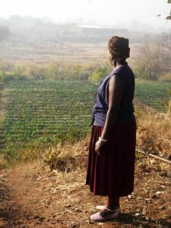 """""""Opp til 90 prosent av matinntaket i Zambia består av mais. """""""