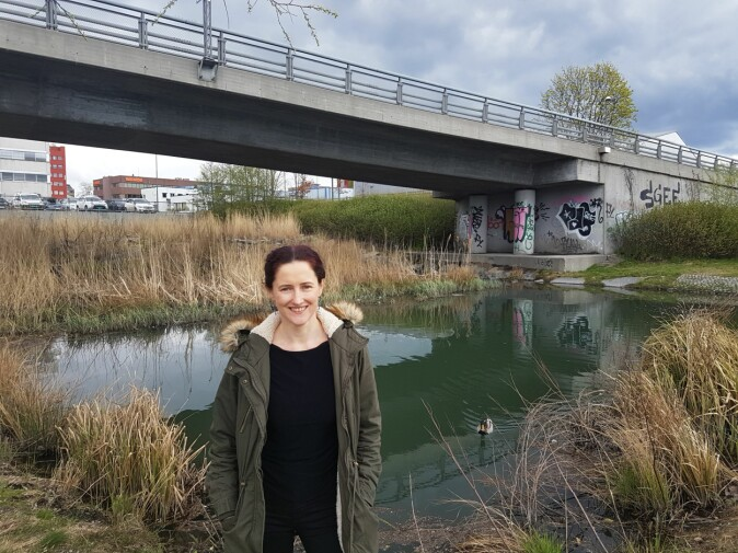 Urban økologi: Mauseth viser fram deler av Hovindammen i Oslo, hvor kommunen har lagt til rekke for biomangfold med bruk av myke vannkanter og sivvekster.