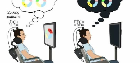 Hjernen vår spiller av dagen vår om natten