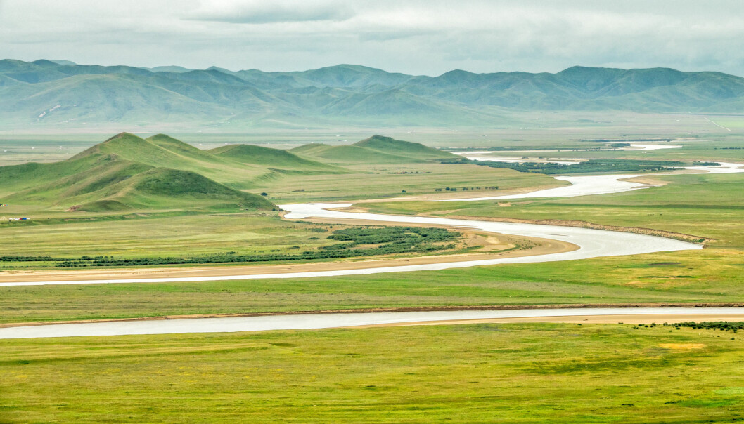 En kinesisk-norsk studie av pollen gjennom 1,7 millioner år, viser hvor overraskende lite artene med planter og trær har endret seg her øst på Tibetplatået. Forskerne ser også hvordan svingninger i naturen stadig gjentas.