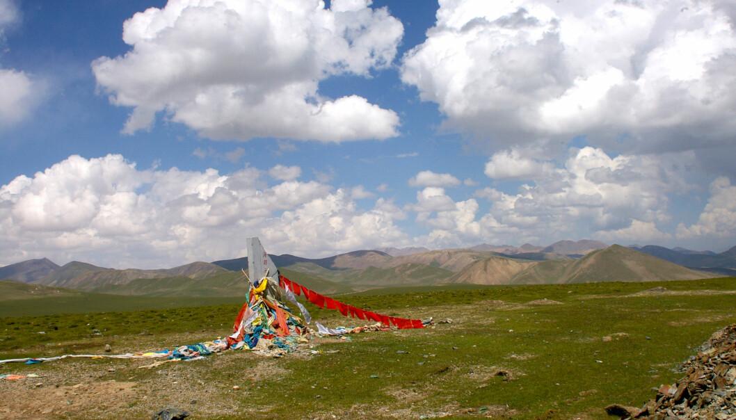 I dag er landskapet øst på Tibetplatået dekket av gress og kratt. Under istidene har landskapet her vært mer eller mindre skogkledt.