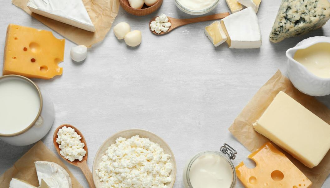 De som spiste melkeprodukter hadde lavere risiko for metabolsk syndrom, diabetes 2 og høyt blodtrykk. Men studien kan ikke si om det var melka i seg selv som ga effekten.