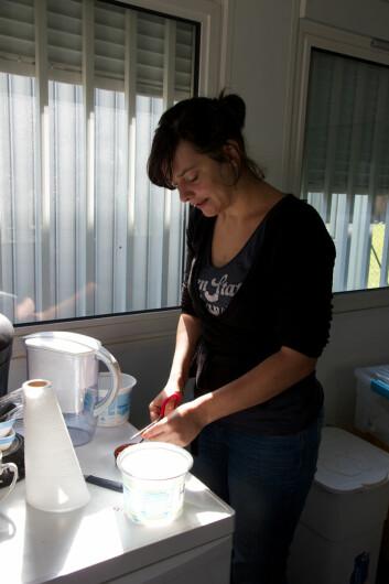 Valérie Dufour kutter opp biter av crabsticks og hundemat til kråkene. (Foto: Ingrid Spilde)