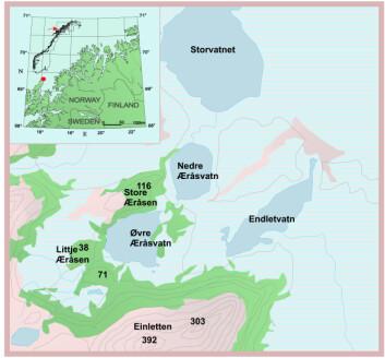 Her overlevde furu og gran siste istid. Bunnprøvene ble tatt bl.a. fra Endletvatn på Andøya i Nordland.