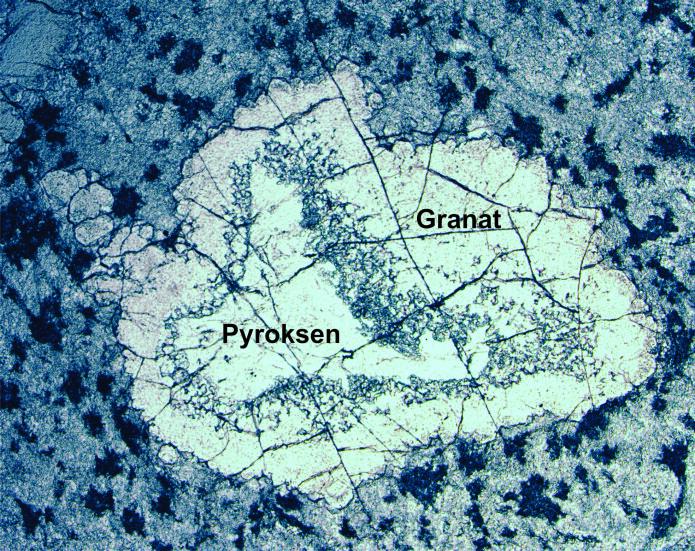 I mikroskopet kan vi studere steinen i detalj: Her ser vi en tykk korona av granat som omslutter lys pyroksen. (Foto: Ane K. Engvik)
