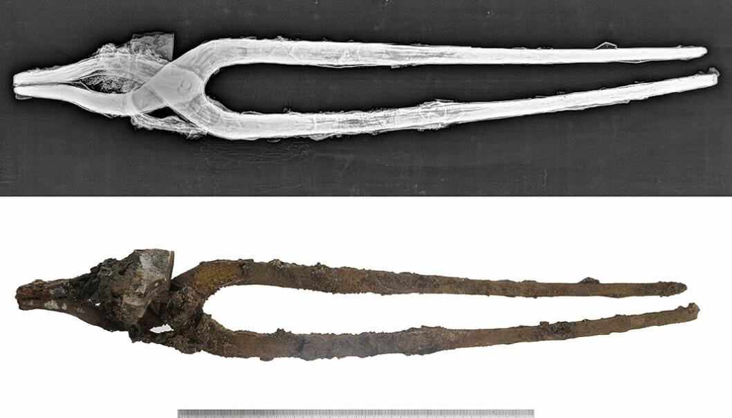 Jerntanga var det første av flere metallfunn grunneieren gjorde da han gikk i gang med dreneringsarbeid rundt boligen. Heldigvis forsto han raskt at dette ikke bare var noe gammelt skrot, men verdt å få undersøkt nærmere. Rett utenfor husveggen hadde en viking ligget begravet i 1000 år eller så. Røntgenbildet viser detaljer ved redskapet som ellers er skjult av korrosjon.