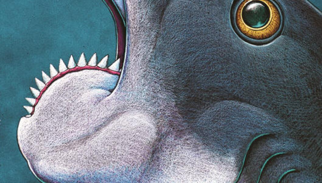 Fossil rovfisk med bisarr tanngard