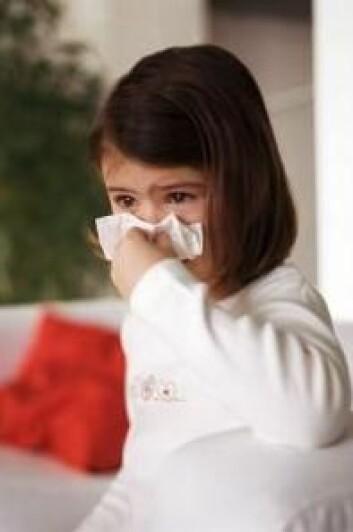 En vanlig forkjølelse fra rhinovirus kan sette gang i astma hos barn med et spesielt gen. (Foto: Colourbox)