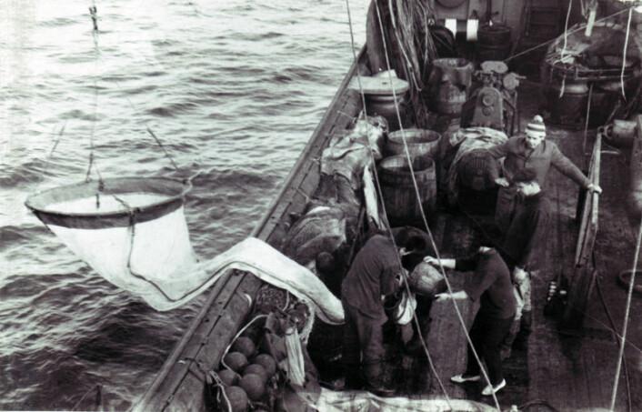 Forskerne brukte en såkalt ringtrål til å samle torskeegg og dyreplankton fra vannmassene. Bildet, som er fra 1969, viser arbeid med prøvetakingen. (Foto: PINRO)