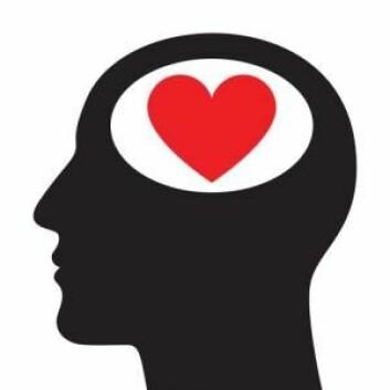 Følelsesmessige belastninger, for eksempel stress, gjør oss mer sårbare overfor utviklingen av forskjellige sykdommer som depresjon og angst. (Foto: Colourbox)