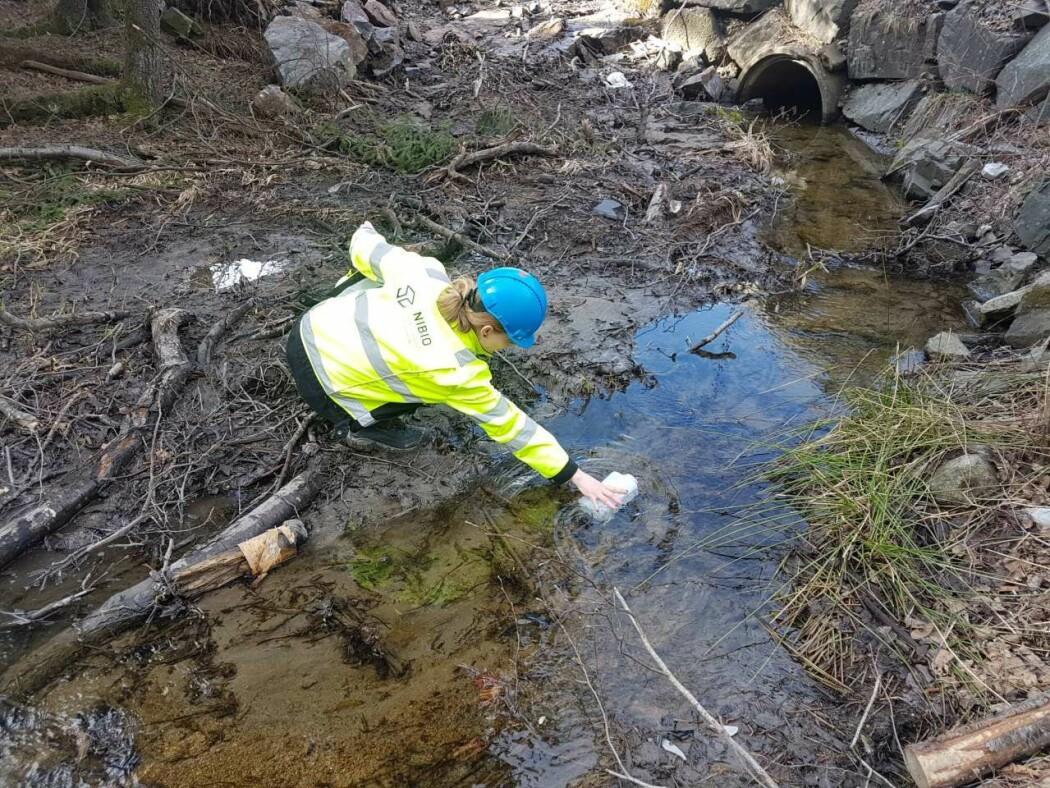 NIBIO-forsker Yvonne Rognan er én av flere som i disse dager er ute i felt og tar vann- og bunndyrprøver i vannforekomster langs strekningen E18 Dørdal-Grimstad. Her fra forrige overvåkingsprosjekt tilknyttet utbyggingen av E18 Rugvedt-Dørdal.