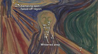 Forskere har avdekket hva som skadet Edvard Munchs «Skrik»