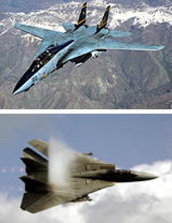 """""""F-14 med utfoldede vinger øverst og bakoversvingte nederst."""""""
