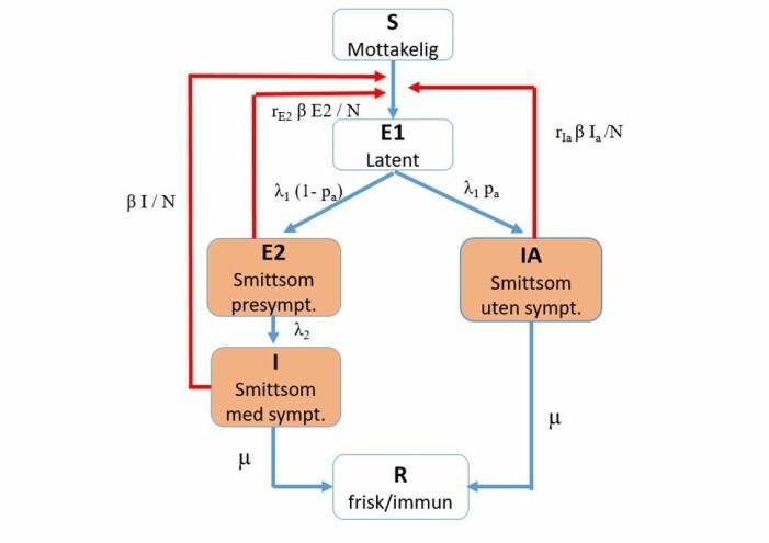Slik sprer koronasmitten seg mellom folk ifølge den matematiske modellen de bruker ved Folkehelseinstituttet.