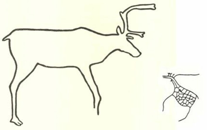 Dette illustrasjonsbildet viser hvordan bergkunsten utviklet seg over tid. Dyret til venstre er typisk animistisk, mens dyret til høyre er totemistisk. (Foto: (illustrasjonsbilde: Ingrid Fuglestvedt))