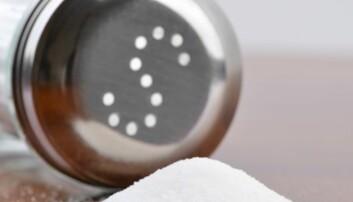 – De færreste spiser for mye salt