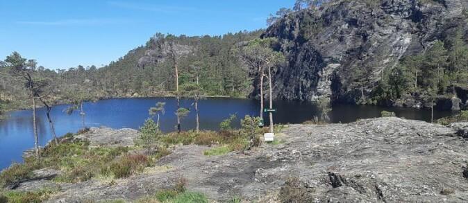 Svartavatnet i Geitaknottane naturreservat i Hordaland. Her finn vi dei vestlegaste og største samanhengande områda med førekomstar av storsalamander i Noreg.