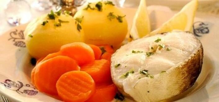 En hvit fin middagstorsk på tallerkenen er noe mange liker. Med færre som jobber i fisket, må prosessene om bord på båtene automatiseres, om vi skal kunne opprettholde kvaliteten på fisken vi får servert. (Foto: Tine)